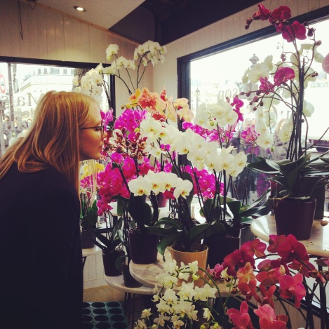 Olla and the Orchids